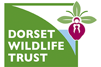 Proud Supporters of the Dorset Wildlife Trust